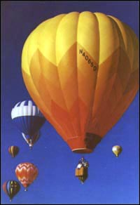 photo of hot air balloons